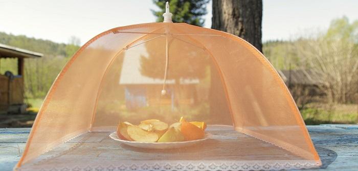 obstfliegen so vertreibt man fruchtfliegen. Black Bedroom Furniture Sets. Home Design Ideas