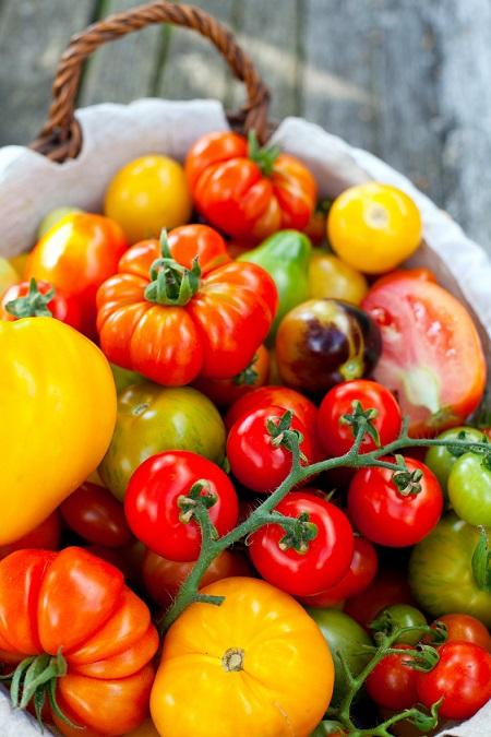 Tomaten: Es gibt unglaublich viele verschiedene Sorten.