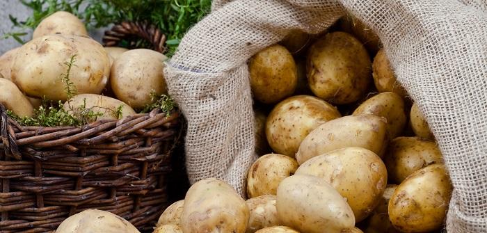 Kartoffeldiät: Sattwerden und trotzdem abnehmen?