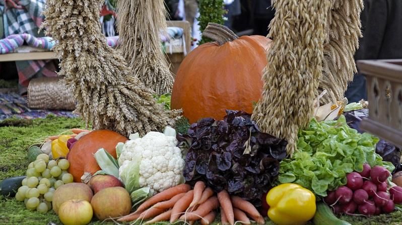 Wann welche Gemüsesorte aus einheimischem Anbau stammt, können Sie hier auf einen Blick erkennen. (#02)