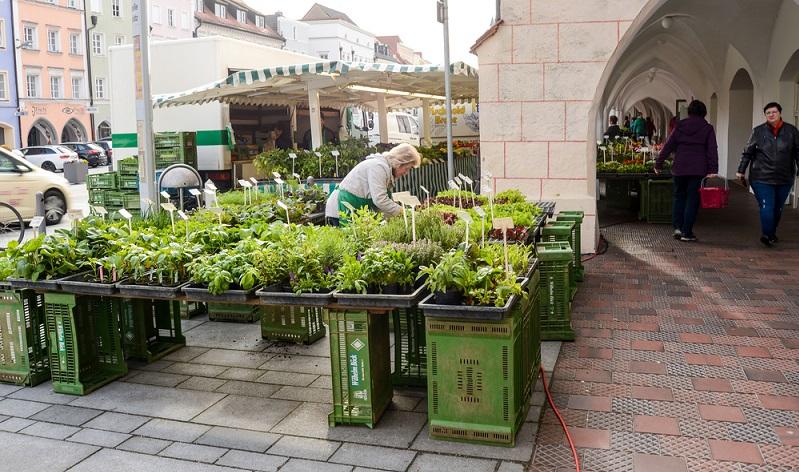 Als kleine Hilfe für den Einkauf auf dem Wochenmarkt, im Bioladen oder Supermarkt sehen Sie hier Saisonkalender für Obst und Gemüse. (#01)