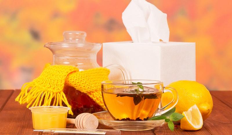 Tee, viel Bettruhe, milde Kost: Der Körper wird während der Erkältung entgiftet. In der Regenerationsphase sollte man sich unbedingt genügend Zeit geben, um wieder auf die Beine zu kommen und den Organismus zu stärken. (#02)