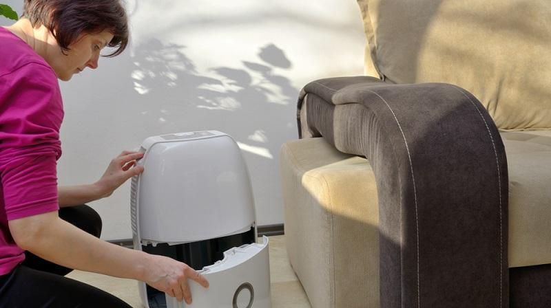 Milbenspray und die Luftfeuchtigkeit im Raum gering halten. (#04)
