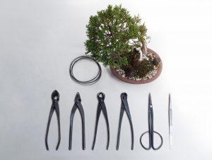 Bonsai Werkzeug-Set aus schwarzem Stahl sollte immer gut gereinigt werden.