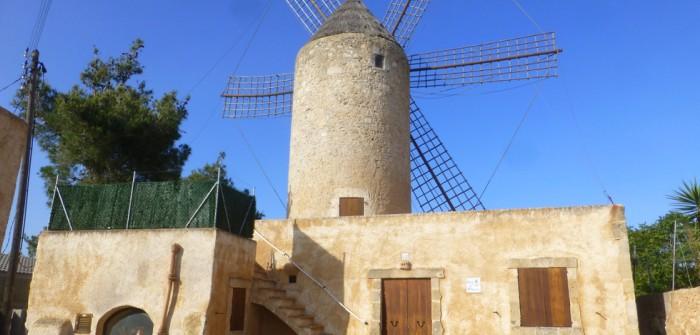 Glückshotel Mallorca: hier im kleinen Ort Felanitx findet man unter anderem eine der typischen Windmühlen. Man sieht förmlich Don Quixote vor sich, seinen aussichtslosen Kampf führend.