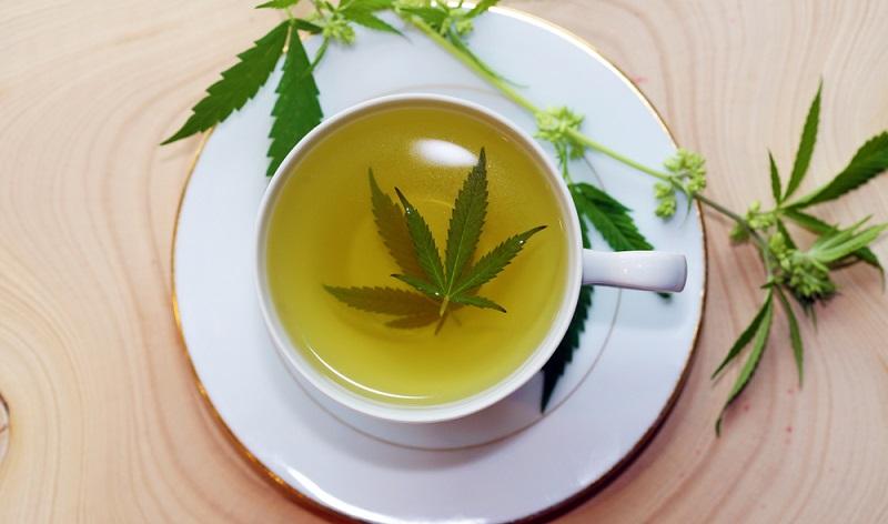 Außerdem wird diesem Tee eine immun ausgleichende Wirkung nachgesagt, das Immunsystem soll harmonischer arbeiten und auch bei bestehenden Allergien reguliert werden.