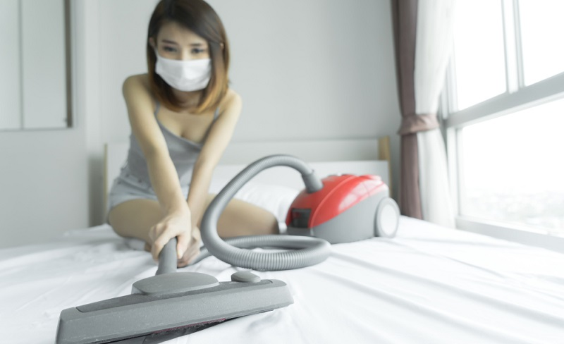 Ein normales Polsterbett kann mit einigem Aufwand frei von Verschmutzungen durch Staub und Flecken gehalten werden.