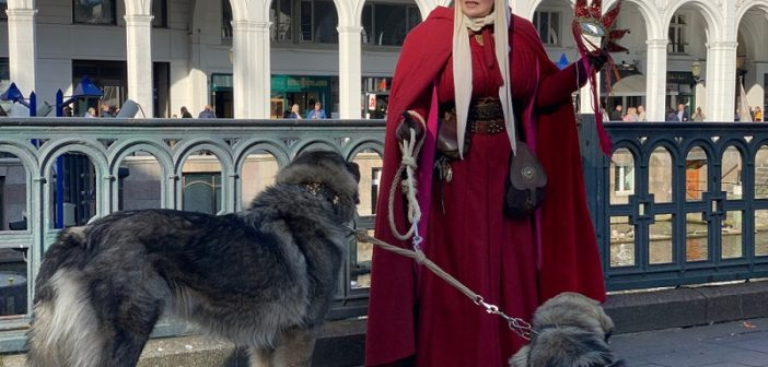 Das Hundegesetz der Hansestadt besagt, dass im gesamten Stadtgebiet eine Anleinpflicht gilt. Außerdem müssen alle Hunde von ihren Besitzern mit Mikrochips gekennzeichnet werden und über eine Haftpflichtversicherung abgesichert sein.